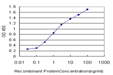 PTF1A Antibody - Detection limit for recombinant GST tagged PTF1A is approximately 0.03 ng/ml as a capture antibody.