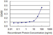 Detection limit for recombinant GST tagged PURA is approximately 10 ng/ml as a capture antibody.