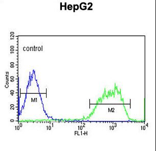PXMP2 Antibody flow cytometry of HepG2 cells (right histogram) compared to a negative control cell (left histogram). FITC-conjugated goat-anti-rabbit secondary antibodies were used for the analysis.