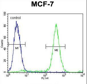 QTRTD1 Antibody flow cytometry of MCF-7 cells (right histogram) compared to a negative control cell (left histogram). FITC-conjugated goat-anti-rabbit secondary antibodies were used for the analysis.