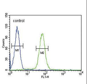 IGHG1 Antibody flow cytometry of HL-60 cells (right histogram) compared to a negative control cell (left histogram). FITC-conjugated goat-anti-rabbit secondary antibodies were used for the analysis.