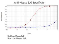 Mouse IgG Antibody - ELISA results of purified Rabbit anti-Mouse IgG Antibody (min x Human Serum Proteins) tested against purified Mouse IgG. Each well was coated in duplicate with 1.0 µg of Mouse IgG  The starting dilution of antibody was 5µg/ml and the X-axis represents the Log10 of a 3-fold dilution. This titration is a 4-parameter curve fit where the IC50 is defined as the titer of the antibody. Assay performed using 3% fish gelatin, Goat anti-Rabbit igG Antibody Peroxidase Conjugated (Min X Bv Ch Gt GP Ham Hs Hu Ms Rt & Sh Serum Proteins) and TMB ELISA Substrate
