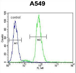 RAD17 Antibody flow cytometry of A549 cells (right histogram) compared to a negative control cell (left histogram). FITC-conjugated goat-anti-rabbit secondary antibodies were used for the analysis.
