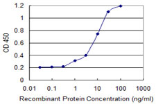 Detection limit for recombinant GST tagged RARRES1 is 0.3 ng/ml as a capture antibody.