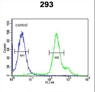 RBM24 Antibody - RBM24 Antibody flow cytometry of 293 cells (right histogram) compared to a negative control cell (left histogram). FITC-conjugated goat-anti-rabbit secondary antibodies were used for the analysis.