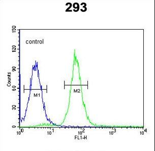 RD / PHYH Antibody - PHYH Antibody flow cytometry of 293 cells (right histogram) compared to a negative control cell (left histogram). FITC-conjugated goat-anti-rabbit secondary antibodies were used for the analysis.