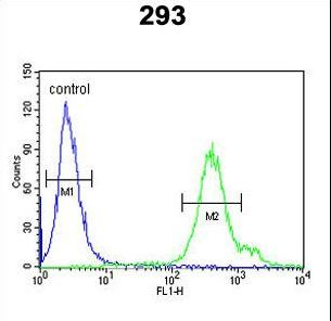 REG3A Antibody - REG3A Antibody flow cytometry of 293 cells (right histogram) compared to a negative control cell (left histogram). FITC-conjugated goat-anti-rabbit secondary antibodies were used for the analysis.