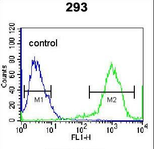 RHOXF2 Antibody flow cytometry of 293 cells (right histogram) compared to a negative control cell (left histogram). FITC-conjugated goat-anti-rabbit secondary antibodies were used for the analysis.