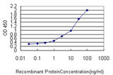Detection limit for recombinant GST tagged RICTOR is approximately 0.03 ng/ml as a capture antibody.