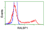 HEK293T cells transfected with either pCMV6-ENTRY RALBP1 (Red) or empty vector control plasmid (Blue) were immunostained with anti-RALBP1 mouse monoclonal, and then analyzed by flow cytometry.