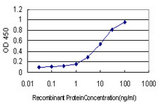 Detection limit for recombinant GST tagged RNASEL is approximately 0.1 ng/ml as a capture antibody.