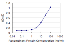 RNF113A Antibody - Detection limit for recombinant GST tagged RNF113A is 0.3 ng/ml as a capture antibody.