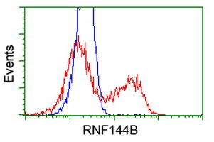 HEK293T cells transfected with either pCMV6-ENTRY RNF144B (Red) or empty vector control plasmid (Blue) were immunostained with anti-RNF144B mouse monoclonal, and then analyzed by flow cytometry.
