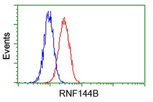 Flow cytometry of HeLa cells, using anti-RNF144B antibody, (Red) compared to a nonspecific negative control antibody (Blue).