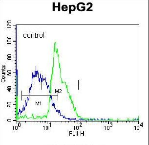 RPL15 / Ribosomal Protein L15 Antibody - RPL15 Antibody flow cytometry of K562 cells (right histogram) compared to a negative control cell (left histogram). FITC-conjugated donkey-anti-rabbit secondary antibodies were used for the analysis.