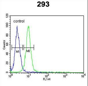RPL18A Antibody - RPL18A Antibody flow cytometry of 293 cells (right histogram) compared to a negative control cell (left histogram). FITC-conjugated goat-anti-rabbit secondary antibodies were used for the analysis.