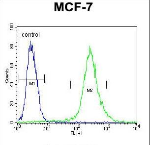 RPS24 Antibody flow cytometry of MCF-7 cells (right histogram) compared to a negative control cell (left histogram). FITC-conjugated goat-anti-rabbit secondary antibodies were used for the analysis.