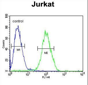 RPS3A / Ribosomal Protein S3A Antibody - RPS3A Antibody flow cytometry of Jurkat cells (right histogram) compared to a negative control cell (left histogram). FITC-conjugated goat-anti-rabbit secondary antibodies were used for the analysis.