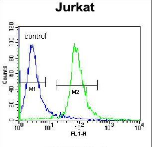 RSBN1 Antibody - RSBN1 Antibody flow cytometry of Jurkat cells (right histogram) compared to a negative control cell (left histogram). FITC-conjugated donkey-anti-rabbit secondary antibodies were used for the analysis.