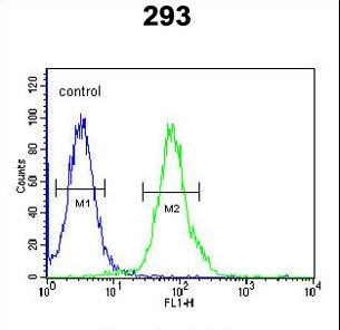 RTKN2 Antibody flow cytometry of 293 cells (right histogram) compared to a negative control cell (left histogram). FITC-conjugated goat-anti-rabbit secondary antibodies were used for the analysis.