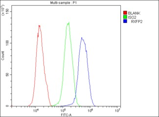 Flow Cytometry analysis of U251 cells using anti-GPCR LGR8 antibody. Overlay histogram showing U251 cells stained with anti-GPCR LGR8 antibody (Blue line). The cells were blocked with 10% normal goat serum. And then incubated with rabbit anti-GPCR LGR8 Antibody (1µg/10E6 cells) for 30 min at 20°C. DyLight®488 conjugated goat anti-rabbit IgG (5-10µg/10E6 cells) was used as secondary antibody for 30 minutes at 20°C. Isotype control antibody (Green line) was rabbit IgG (1µg/10E6 cells) used under the same conditions. Unlabelled sample (Red line) was also used as a control.