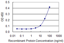 SCG5 / 7B2 Antibody - Detection limit for recombinant GST tagged SCG5 is 3 ng/ml as a capture antibody.
