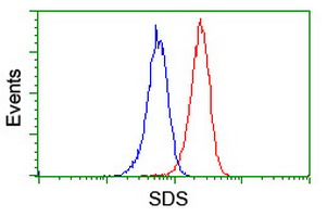 Flow cytometry of Jurkat cells, using anti-SDS antibody (Red), compared to a nonspecific negative control antibody (Blue).