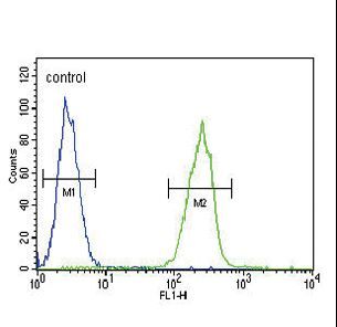 SERPINA7 Antibody flow cytometry of MDA-MB231 cells (right histogram) compared to a negative control cell (left histogram). FITC-conjugated goat-anti-rabbit secondary antibodies were used for the analysis.