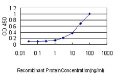 Detection limit for recombinant GST tagged SERPINH1 is approximately 0.1 ng/ml as a capture antibody.