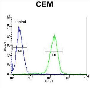 SFR1 / C10orf78 Antibody - C10orf78 Antibody flow cytometry of CEM cells (right histogram) compared to a negative control cell (left histogram). FITC-conjugated goat-anti-rabbit secondary antibodies were used for the analysis.
