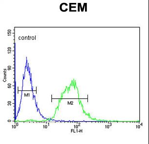 SLC22A6 Antibody flow cytometry of CEM cells (right histogram) compared to a negative control cell (left histogram). FITC-conjugated goat-anti-rabbit secondary antibodies were used for the analysis.