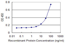 SLC22A6 / OAT1 Antibody - Detection limit for recombinant GST tagged SLC22A6 is 3 ng/ml as a capture antibody.