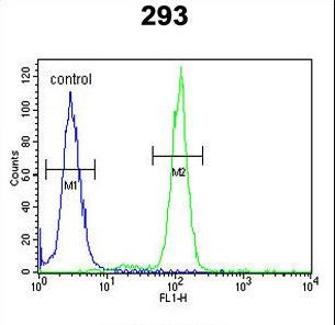 OST alpha Antibody flow cytometry of 293 cells (right histogram) compared to a negative control cell (left histogram). FITC-conjugated goat-anti-rabbit secondary antibodies were used for the analysis.