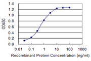 Detection limit for recombinant GST tagged SLC5A2 is 0.03 ng/ml as a capture antibody.