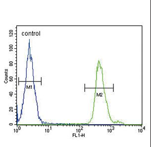 SMAD3 Antibody - SMAD3-S208 Antibody flow cytometry of MDA-MB231 cells (right histogram) compared to a negative control cell (left histogram). FITC-conjugated goat-anti-rabbit secondary antibodies were used for the analysis.