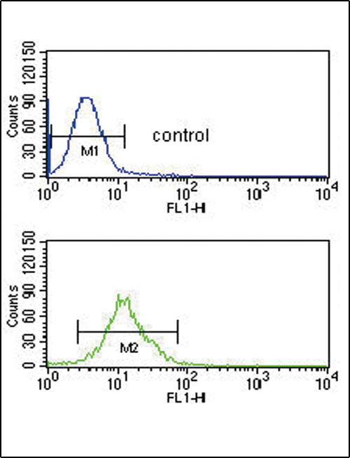 SMYD3 Antibody flow cytometry of CEM cells (bottom histogram) compared to a negative control cell (top histogram). FITC-conjugated goat-anti-rabbit secondary antibodies were used for the analysis.