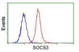Flow cytometry of HeLa cells, using anti-SOCS3 antibody (Red), compared to a nonspecific negative control antibody (Blue).