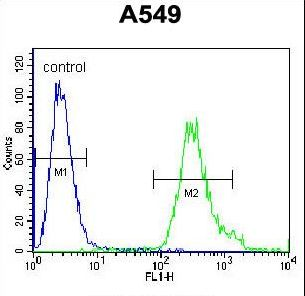 SOWAHD / ANKRD58 Antibody - ANKRD58 Antibody flow cytometry of A549 cells (right histogram) compared to a negative control cell (left histogram). FITC-conjugated goat-anti-rabbit secondary antibodies were used for the analysis.
