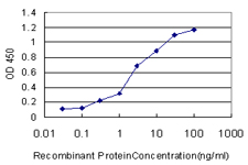 Detection limit for recombinant GST tagged SP1 is approximately 0.1 ng/ml as a capture antibody.