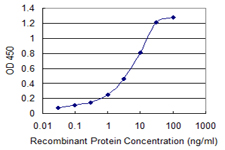 Detection limit for recombinant GST tagged SPN is 0.03 ng/ml as a capture antibody.