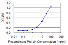 Detection limit for recombinant GST tagged ST13 is 0.3 ng/ml as a capture antibody.