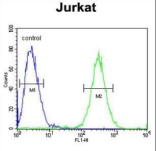 ST3GAL5 Antibody flow cytometry of Jurkat cells (right histogram) compared to a negative control cell (left histogram). FITC-conjugated goat-anti-rabbit secondary antibodies were used for the analysis.