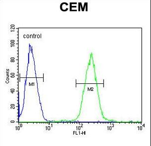 STAMBPL1 Antibody flow cytometry of CEM cells (right histogram) compared to a negative control cell (left histogram). FITC-conjugated goat-anti-rabbit secondary antibodies were used for the analysis.