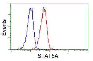 Flow cytometry of Jurkat cells, using anti-STAT5A antibody (Red), compared to a nonspecific negative control antibody (Blue).