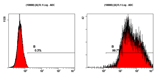 Indirect FCM analysis of NTERA-2 cl. D1 cells stained, followed by PE-conjugated goat anti-mouse IgM.  This image was taken for the unconjugated form of this product. Other forms have not been tested.
