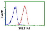 Flow cytometry of Jurkat cells, using anti-SULT1A1 antibody (Red), compared to a nonspecific negative control antibody (Blue).