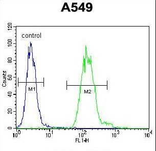 TDP2 / TTRAP Antibody - EAPII Antibody flow cytometry of A549 cells (right histogram) compared to a negative control cell (left histogram). FITC-conjugated goat-anti-rabbit secondary antibodies were used for the analysis.