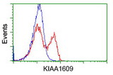 HEK293T cells transfected with either overexpress plasmid (Red) or empty vector control plasmid (Blue) were immunostained by anti-KIAA1609 antibody, and then analyzed by flow cytometry.