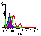 TLR5 Antibody - Intracellular flow cytometry of TLR5 in PBMCs using 0.5 ug/10^6 cells of Monoclonal Antibody to TLR5 (Toll-like receptor 5) FITC Conjugate. Shaded histogram represents cells without antibody; green represents isotype control; red represents anti-TLR5 antibody. This image was taken for the unconjugated form of this product. Other forms have not been tested.