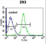 TNFSF15 Antibody flow cytometry of 293 cells (right histogram) compared to a negative control cell (left histogram). FITC-conjugated goat-anti-rabbit secondary antibodies were used for the analysis.